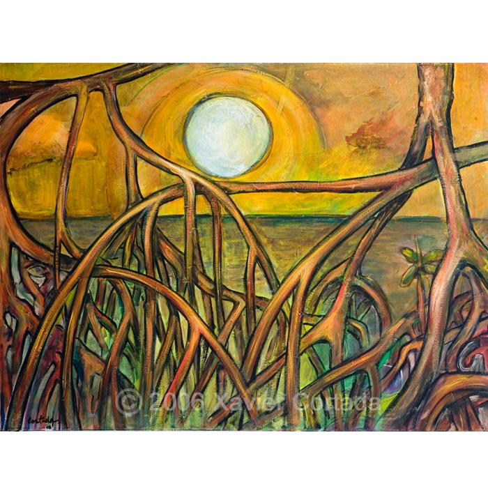 Mangroves Sunset