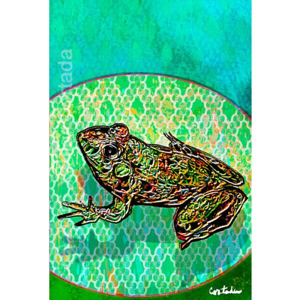 Florida Bog Frogs