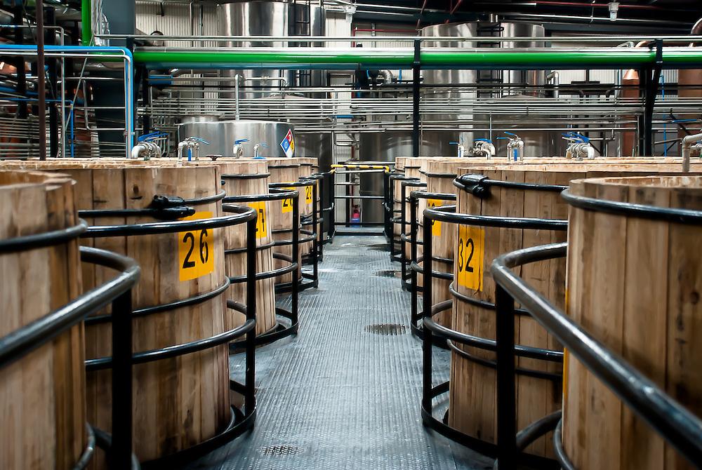 proceso de fermentación tequila patron