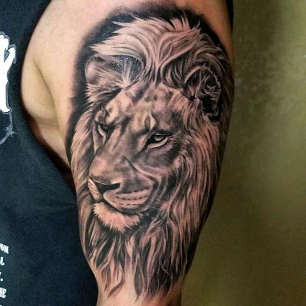 Brandon: Realism Lion