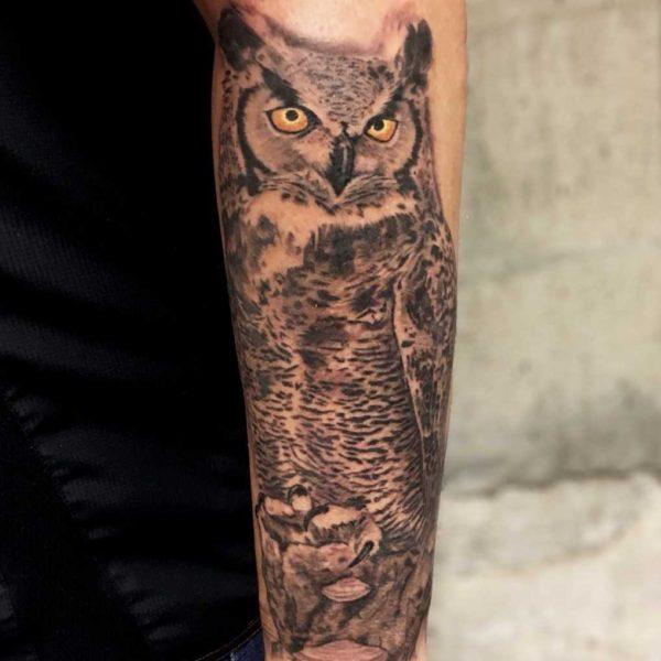 Dock: Owl