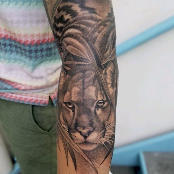 Brandon: Cougar