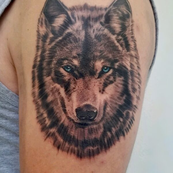 Brandon: Wolf