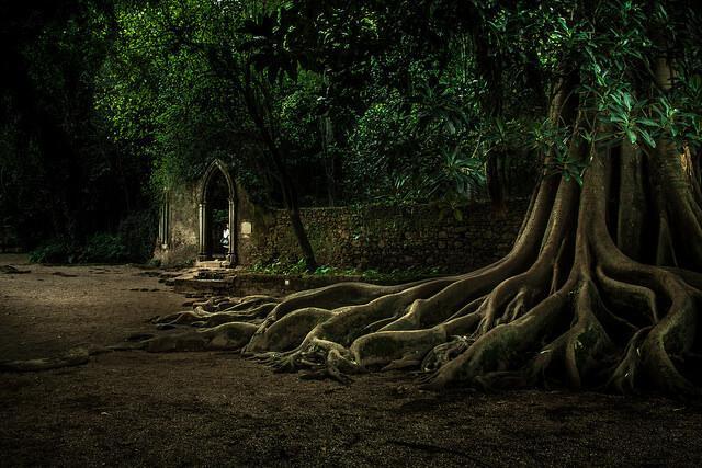 Quinta das Lagrimas gardens, folly and Pipe of Love, Coimbra. Photo credit Luis Martins