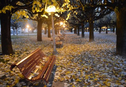 Bench, Manuel Braga park, Coimbra