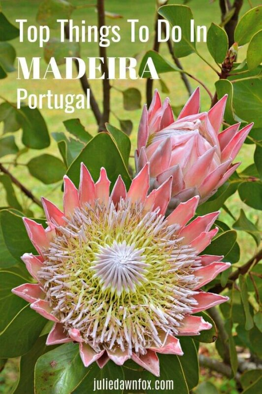 Things to do in Madeira, Portugal