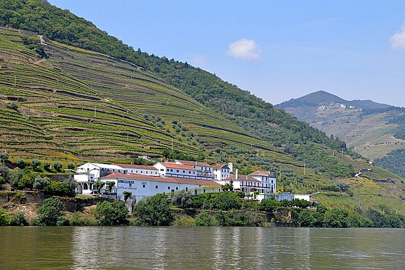 Wine estates by the River Douro