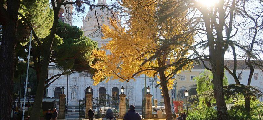 Jardim da Estrela and Basilica, Lisbon, Portugal in winter
