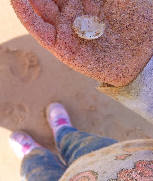 Little girl with a shell and sandy hand