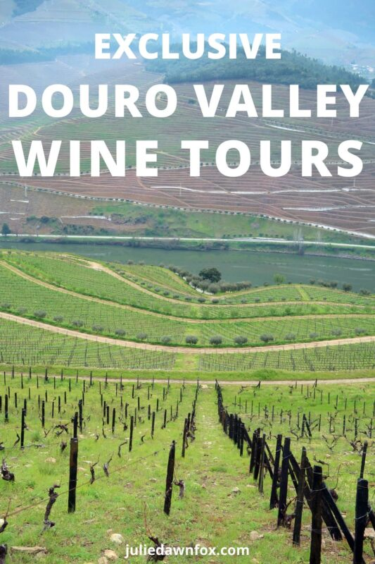 Vineyards. Douro Valley Private Wine Tours