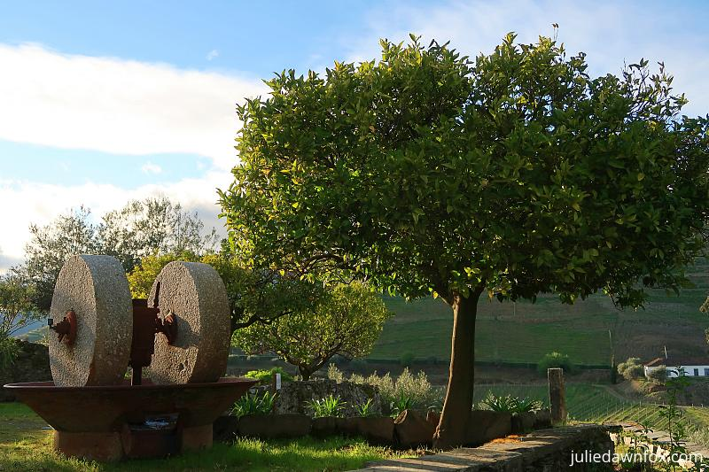 Millstones and orange tree, Quinta do Crasto