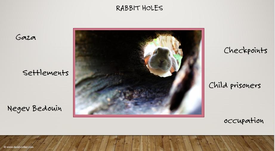 BDS rabbit holes