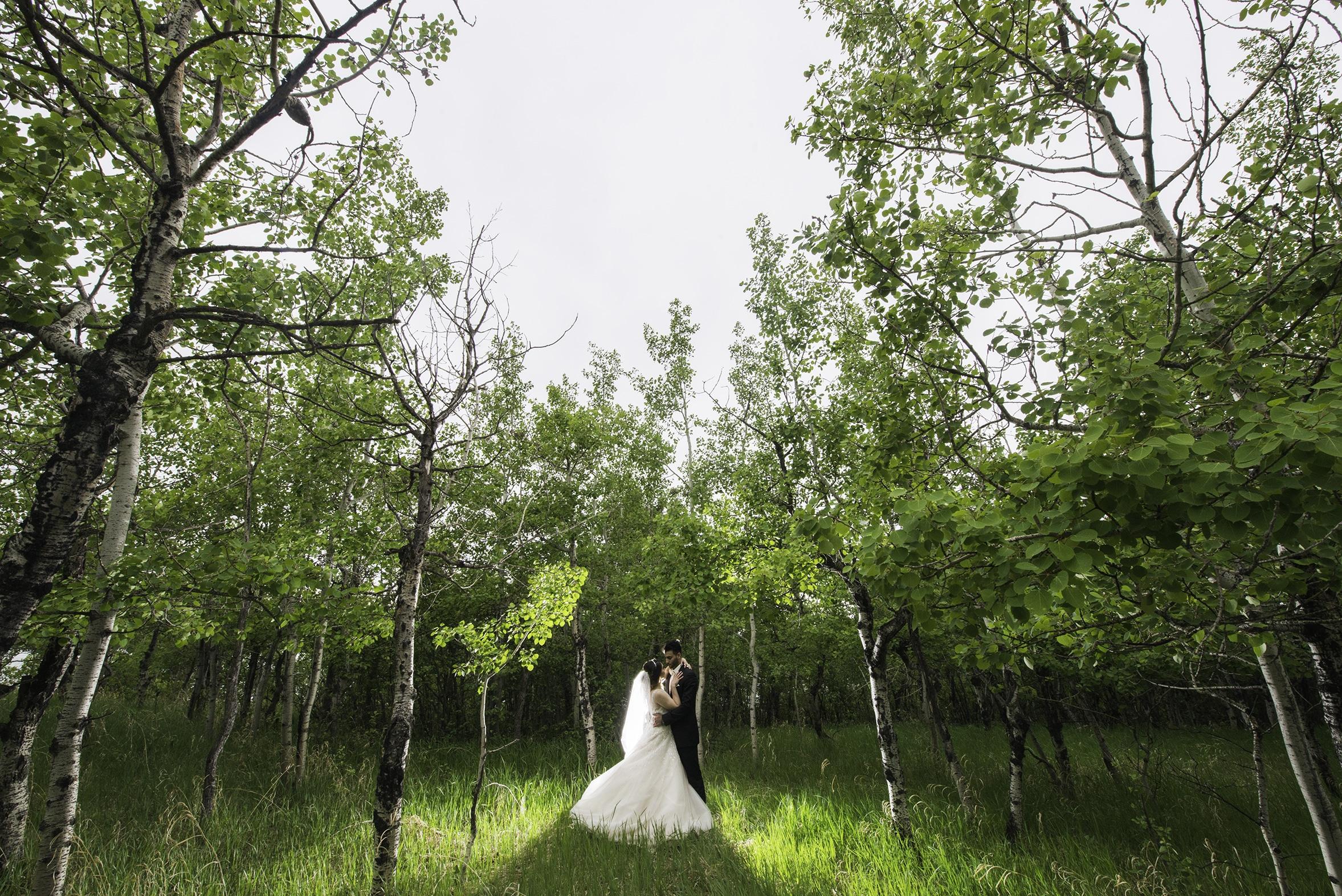 bride and groom portraits calgary