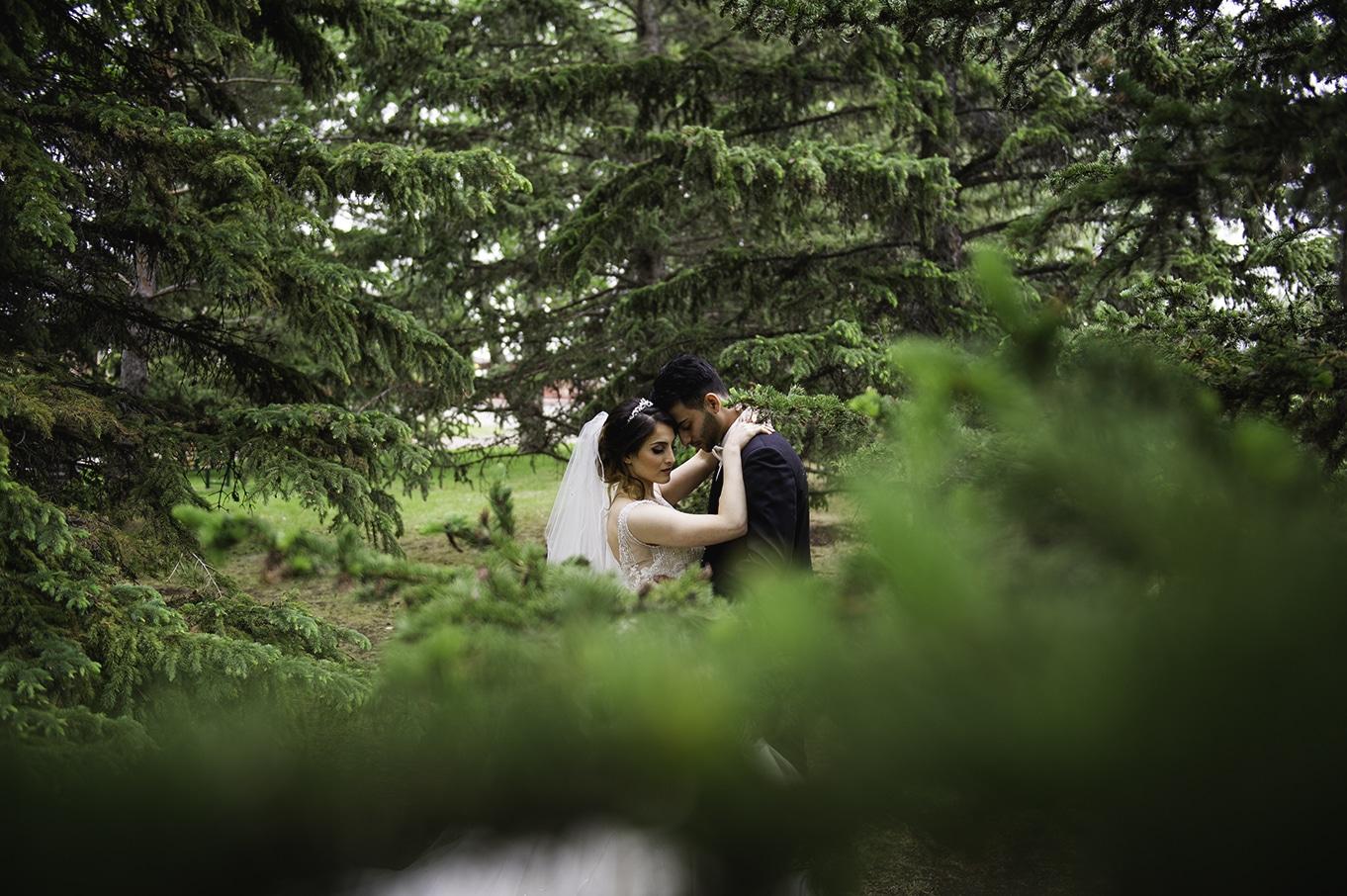 wedding heritage park
