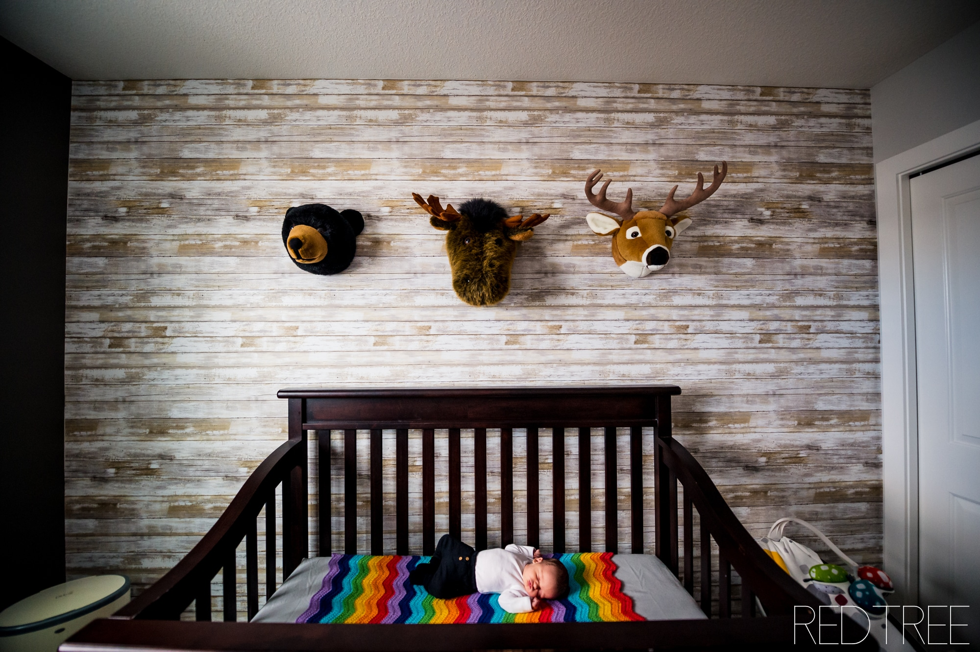 Edmonton Newborn Photographer: Newborn at Home Lifestyle Session