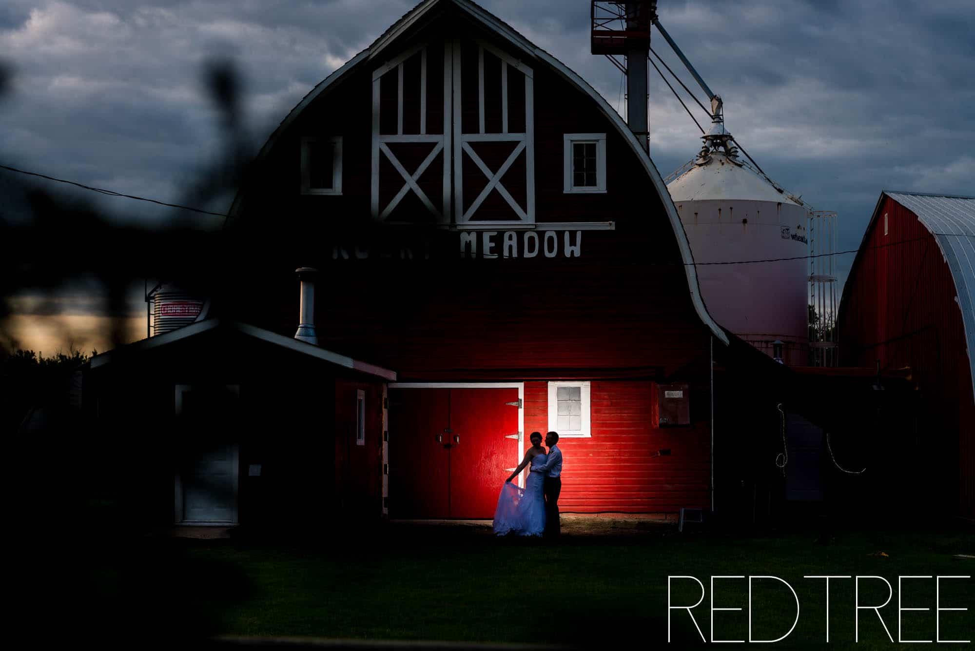 Camrose Farm Wedding: Backyard Wedding Photography
