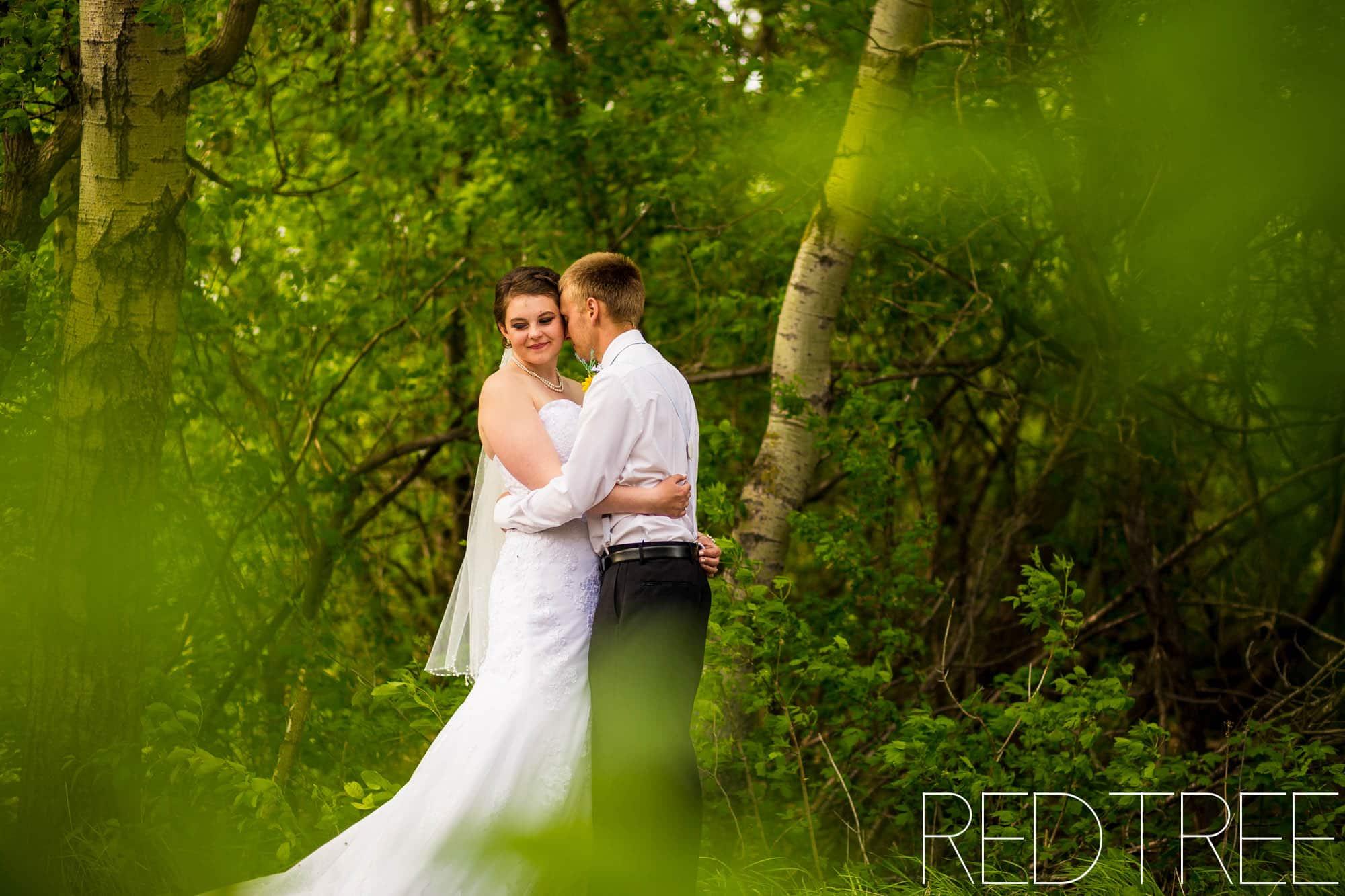 covid wedding camrose wedding backyard wedding
