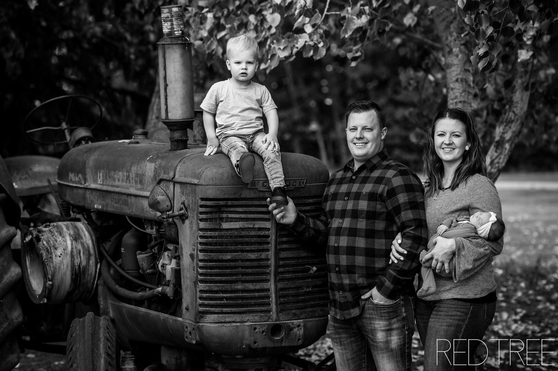 Cherry Lane Family Photography: Newborn Photography at Cherry Lane BnB
