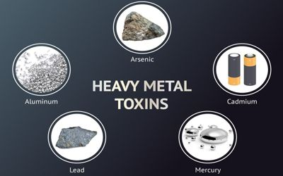 Could You Be Suffering from Heavy Metal Exposure?