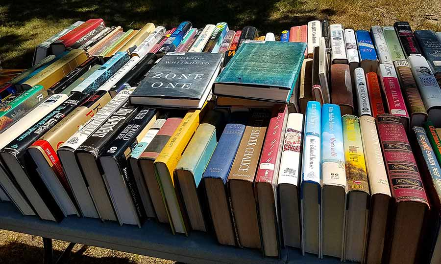 The Windham Free Library book sale