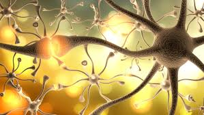 After solanezumab – where does Alzheimer's disease research go from here?