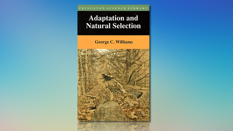 "How ""Adaptation and Natural Selection"" Changed Two Lives"
