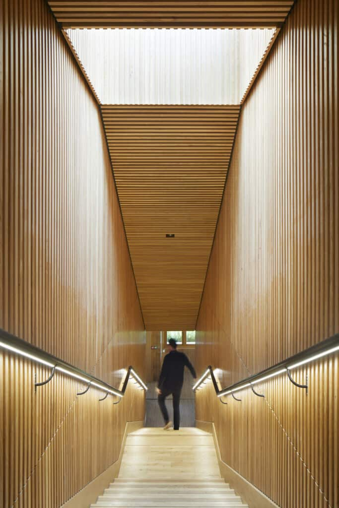 Timber-lined staircase —both walls and ceiling
