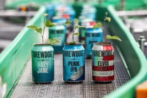 BrewDog cans with branches out of tops, sat on conveyor belt