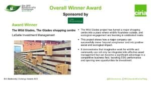 Slide announcing Overall Winner Award presented to The Wild Glades project.