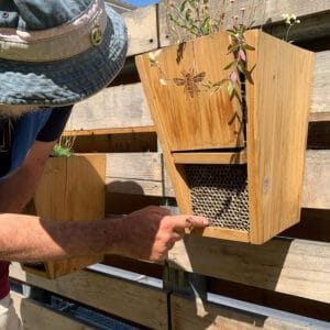 Image of bee hotel at the Wild Glades.