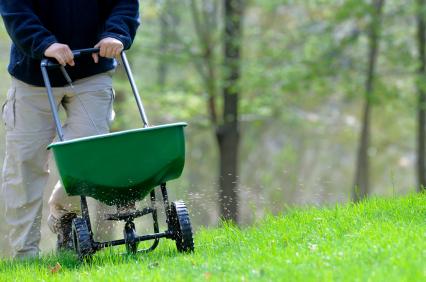 HomeZada Home Maintenance Tip:  Fertilize Your Lawn