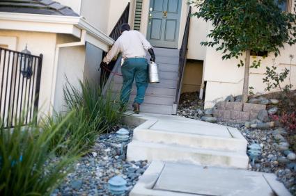 Home Maintenance Tip: Spray Pest Control Around the Home