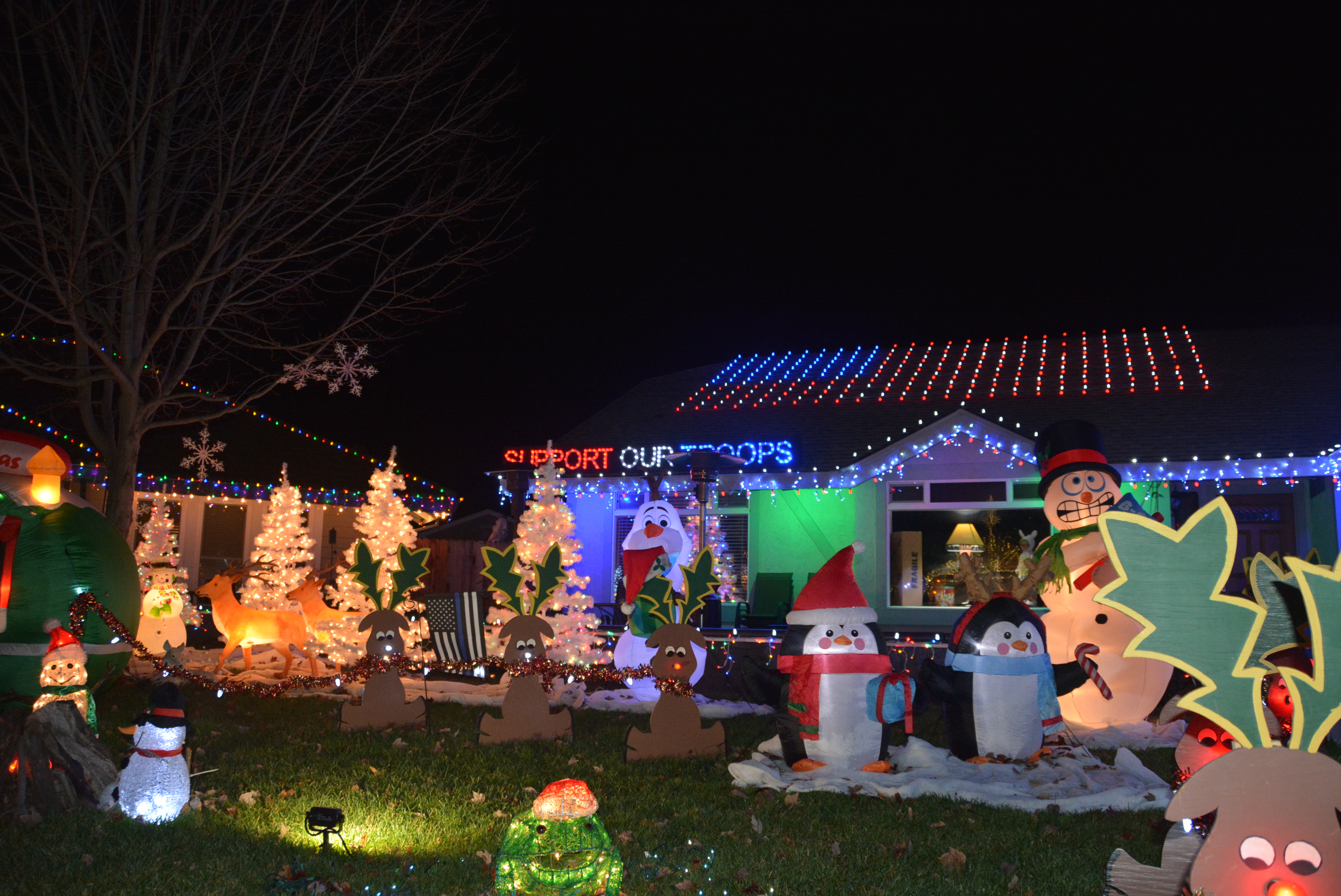 Neighborhood Lights