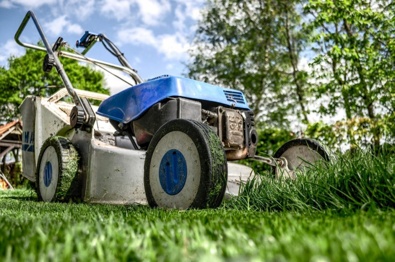 Tips and Benefits of Keeping a Tidy Garden