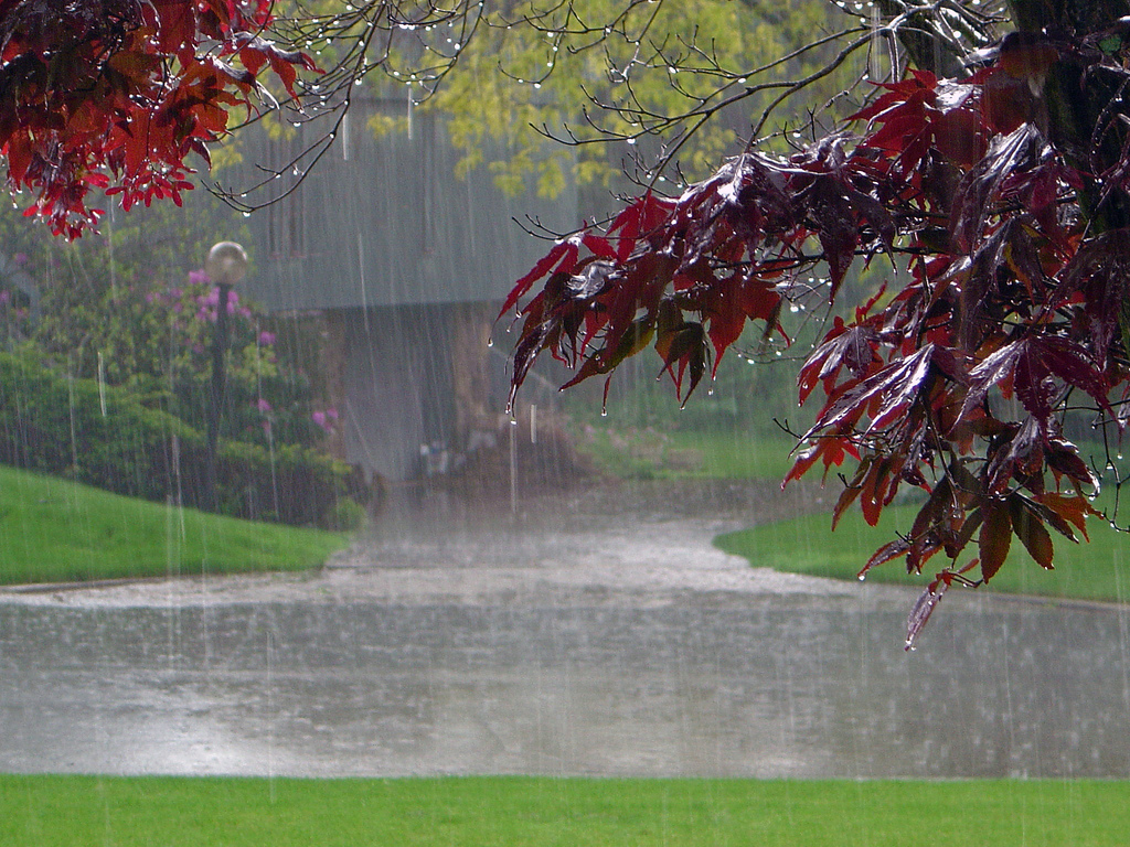5 Home Features to Check After a Heavy Storm