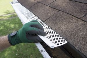 How To Keep Nesting Critters Out of Your Gutters