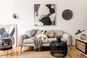 How To Make Your House More Visually Appealing
