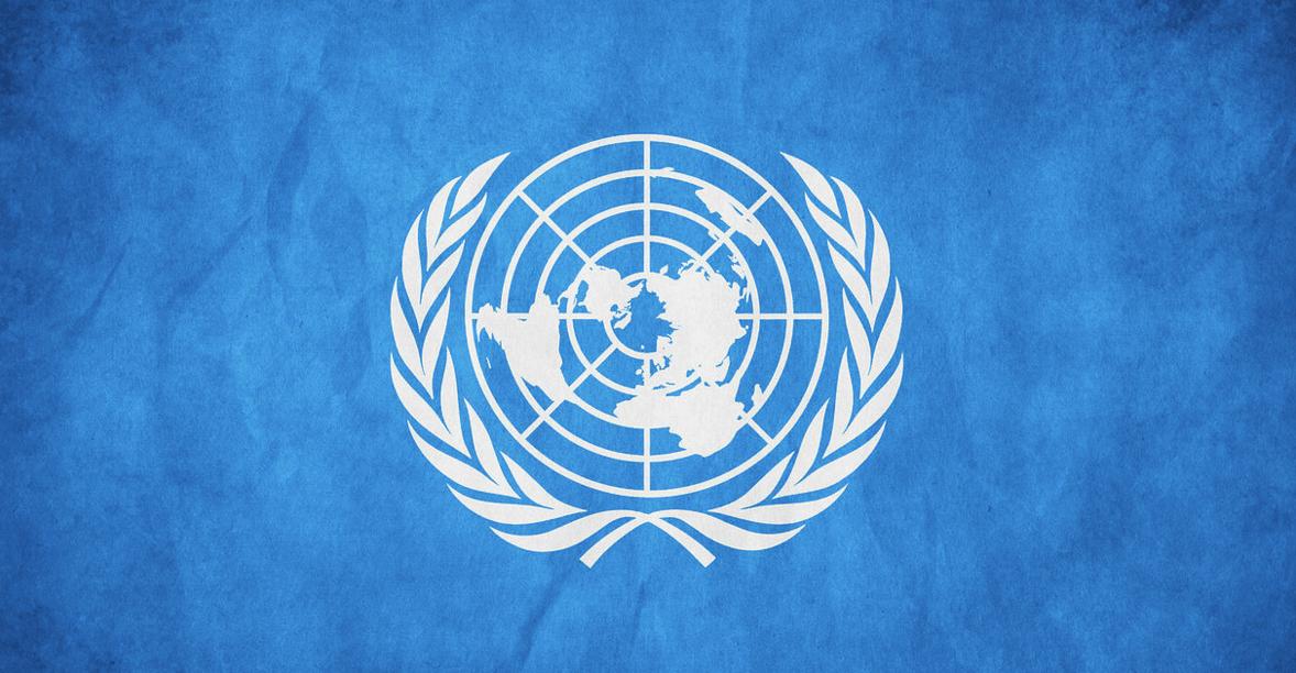 united nations toronto, casie stewart