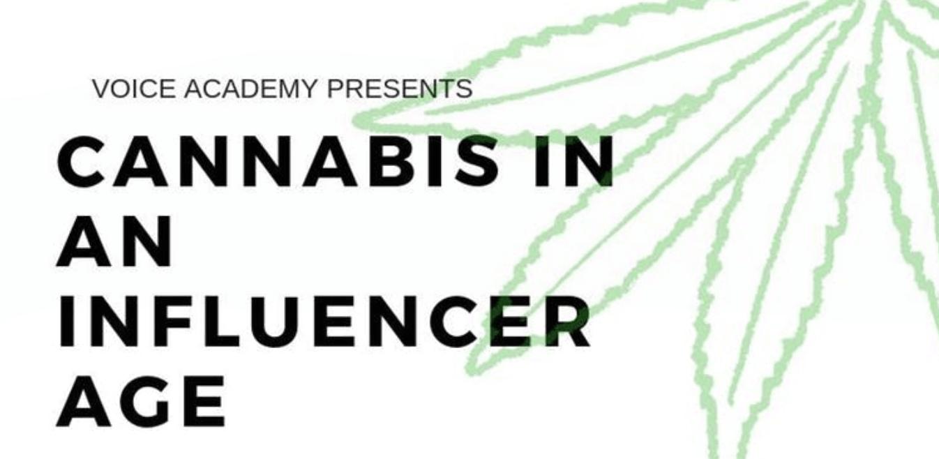 casie stewart, cannabis, influencer, marketing, jones media, wework