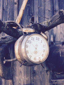 Rusty analogue alarm clock hanging on a branch   nextlevelwarrior.com