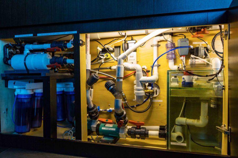 300 Gallon Jellyfish Aquarium