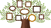 Researching Your Family Tree? We Can Help!