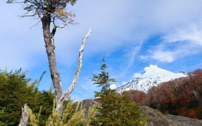 Sernatur anuncia a nueva autoridad para su dirección regional en La Araucanía