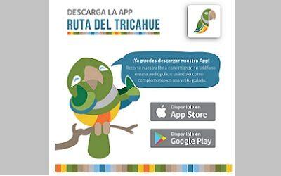Ruta del Tricahue estrena una aplicación móvil para visitas autoguiadas