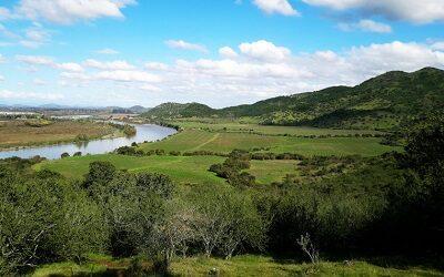 Cinco nuevas viñas se unieron este año a la Ruta del Vino Valle del Maule