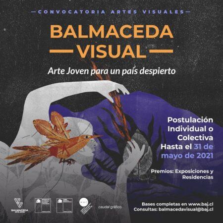 Balmaceda VisualArte Joven para un País Despierto