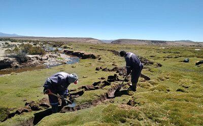 Chile muestra importante avance en acciones para frenar la desertificación