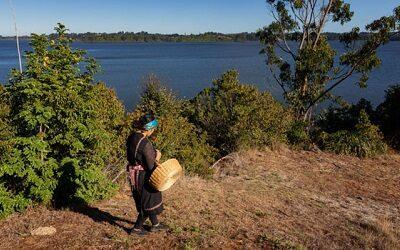La experiencia del turismo indígena en Chile: desde La Araucanía al mundo