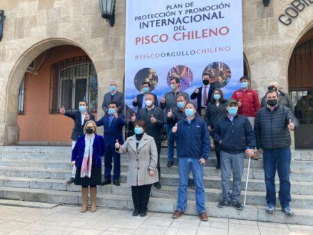 Plan de Protección y Promoción Internacional del Pisco Chileno