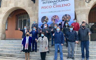 Plan de Protección y Promoción Internacional para el Pisco Chileno